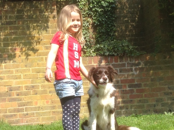 training classes, dogs and children