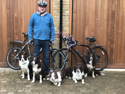 dogs and bikes